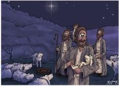 Shepherd Lambs