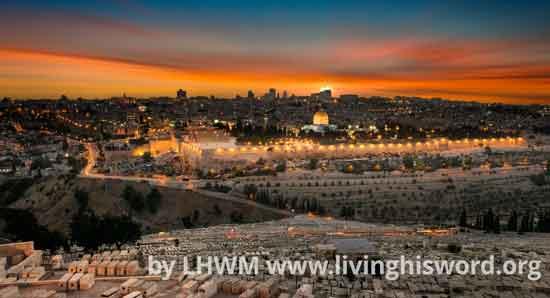 juraselm city by lhwm