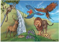 genesis animals