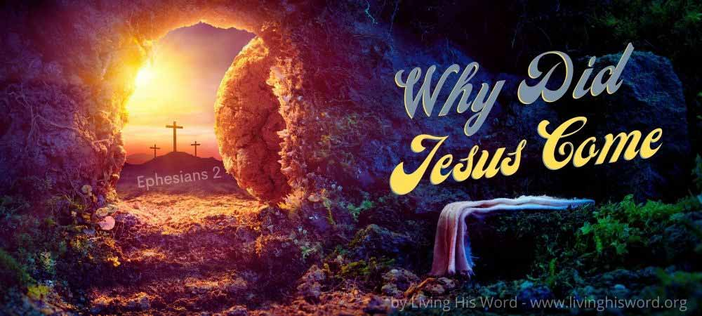 why-did-jesus-come-bible-study