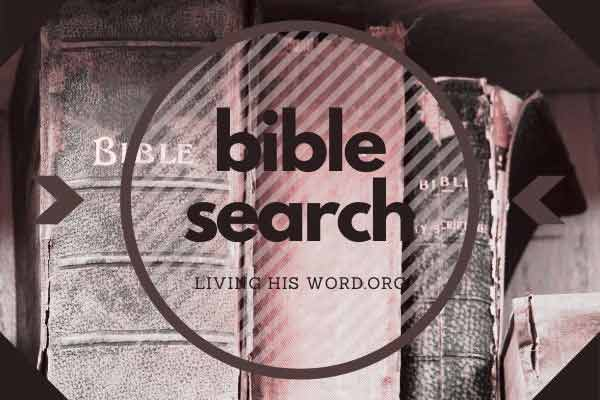 bible-tools-bible-search